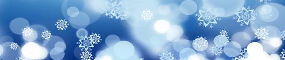 Holiday Concerts |  Dec 1 & 2